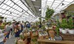 Garden Festival d'Autunno: dal 19 settembre l'edizione della rinascita