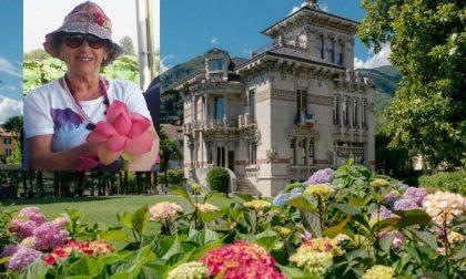 Un acquerello botanico per Luisella Radice Monti dell'Ortofloricola Comense, scomparsa a luglio