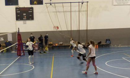 Albese Volley la Tecnoteam work in progress in palestra verso l'esordio del 22 novembre
