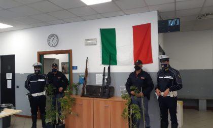 Fucile, pistola, spada giapponese e coltello: un arsenale (abusivo) a Como. Arrestato 51enne di Cadorago