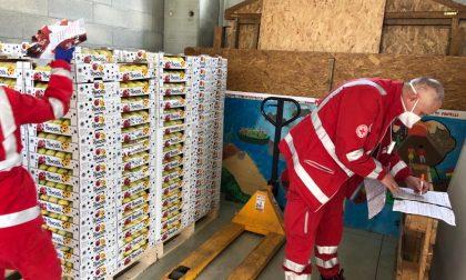 Vendita record di mele a sostegno della Croce rossa: incassati 41mila euro