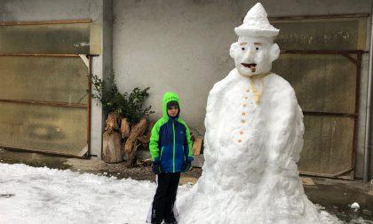 Un gigante di neve, ecco un pupazzo bellissimo