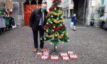 """Confesercenti allestisce a Porta Torre l'Albero di Natale """"con i doni del Governo"""" FOTO"""