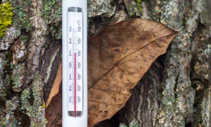 Arriva il Favonio (Fohn), su le temperature   Previsioni meteo Lombardia