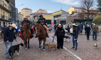 Olgiate, benedizione degli animali dal parroco per Sant'Antonio