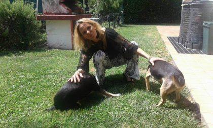 """Sisme"" si è fermata in memoria di Mirella Toso"