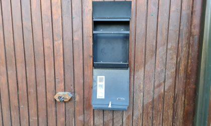 """Ancora vandali al Parco Mamete di Cascina Amata. I gestori: """"Ora rubano anche la posta, ci siamo stancati"""""""