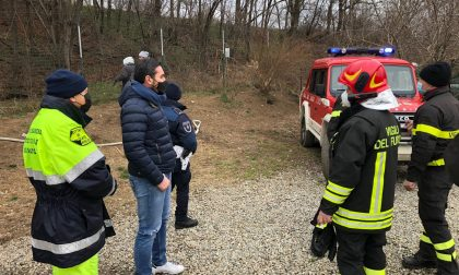 """Incendio al canile di Olgiate il sindaco lancia l'appello: """"Aiutiamo i gestori del canile e gli animali"""""""
