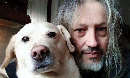 """Beethoven, avvelenato a Fagnano """"da chi sa solo odiare i cani"""": la commovente lettera"""