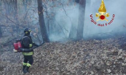 Incendio vegetazione a Brenna