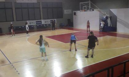 Basket femminile il Btf Cantù parteciperà a un torneo tra maggio e giugno