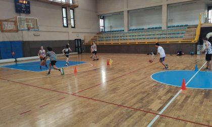 Pol Comense l'attività di basket e volley potrà ripartire dopo Pasqua
