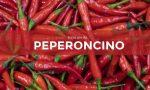 Tutti ortisti: in edicola con il Giornale di Cantù, Olgiate ed Erba i semi di peperoncino