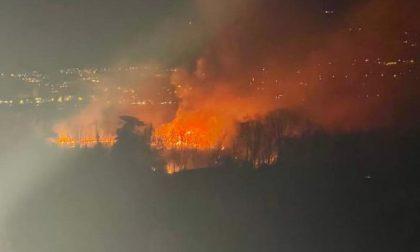 Annone, maxi incendio in riva al lago