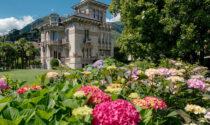 """Villa Bernasconi riapre tra mostre e """"cacciatori botanici"""""""