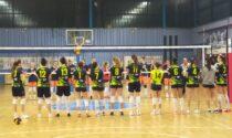 """Albese Volley Cristiano Mucciolo coach Tecnoteam: """"A Cremona sarà battaglia su ogni pallone"""""""