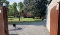 Nichel nell'acqua: fontanelle chiuse nel parco di Porta Spinola