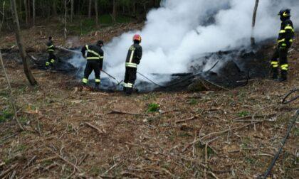 Fiamme nei boschi Vigili del Fuoco e Volontari antincendio al lavoro