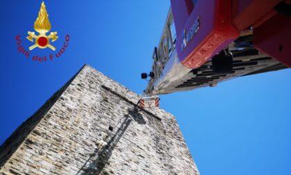 """Da San Vitale è caduto un sasso, Civitas: """"Che cosa dobbiamo aspettare prima che si inizi a mettere in sicurezza le mura e le torri della città?"""""""
