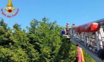 Brutto atterraggio: rimane incastrato con il parapendio negli alberi