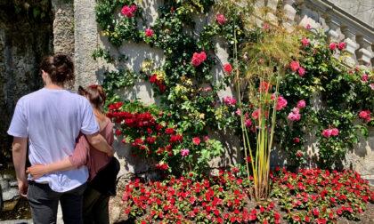 Bellezza, storia, natura a Villa Carlotta e Villa del Balbianello: la perfetta gita fuori porta è in Tremezzina