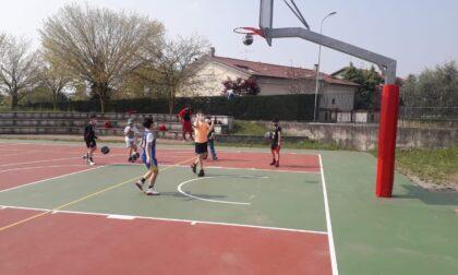 Basket giovanile al via gli Open days del minibasket SCB