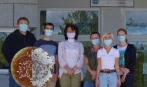 Nuovo antibiotico scoperto nei laboratori dell'Insubria: arma preziosa contro le infezioni batteriche