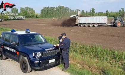 Fanghi tossici spacciati per fertilizzanti: campi contaminati anche nel comasco