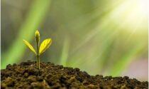 Economia: su cosa conviene investire nel 2021?