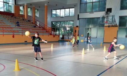 Pallacanestro giovanile tutto pronto per il Summer Basket Camp a Cabiate