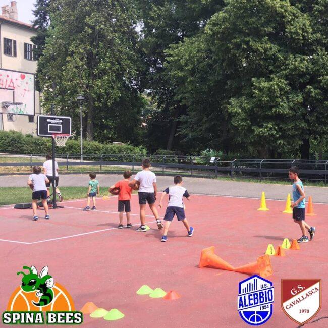 pallacanestro lariana Spina Bees Alebbio