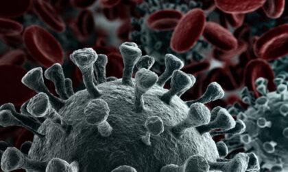 Coronavirus in Lombardia, 131 casi in Lombardia