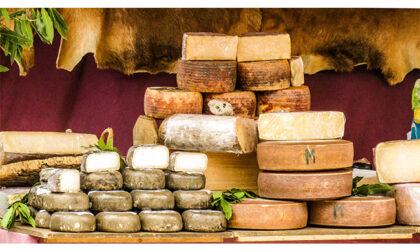 I formaggi tipici della Sicilia e le loro particolarità