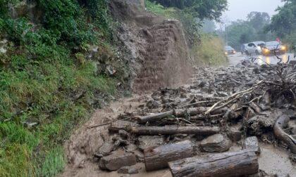 Maltempo sul lago: fango e alberi in strada tra Argegno e Schignano