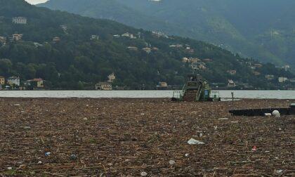 Una marea di fango e legname, lago invaso dai detriti a Como: battelli sospesi