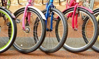 Biciclette all'asta a Locate Varesino: nessuno le reclama, il Comune le vende