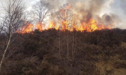Incendi boschivi: chiesto il rinvio a giudizio di due persone