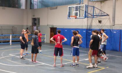 Basket C Silver, Le Bocce Erba è già al lavoro sotto la regia di coach Arturo Fracassa