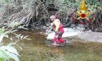 Cane finisce nel Lambro, soccorso dai Vigili del fuoco